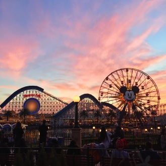 Disney California Adventure Park, CA, 12/20/2015