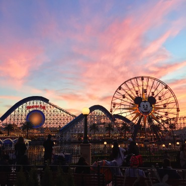 Disney California Adventure Park, CA, 12/20/2015